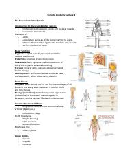 Intro to Anatomy Lecture 2 (2).pdf