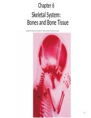 Chapter 6-Bone.ppt