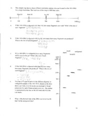 BS 171 - Enzyme Site Handout