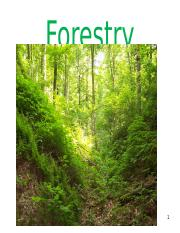 Forestry FULL NOTES.ppt