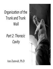 Lecture_pt2_ThoracicCavity_2014_toPost.pdf