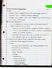 Anatomy & Physiology Notes