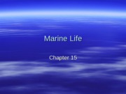 Chap 15 Marine Life Classification