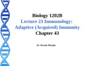 Lecture 23 Adaptive Acquired Immunity