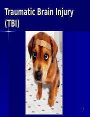 TraumaticBrainInjury short ppt - Traumatic Brain Injury(TBI