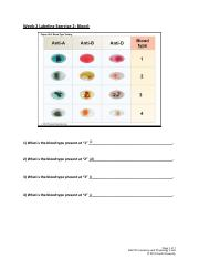SU_BIO1014_W2_Blood_Lab_Labeling_Exercise_2
