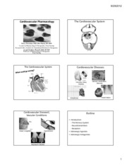 Cardiovascular Pharmacology_(6 slides)
