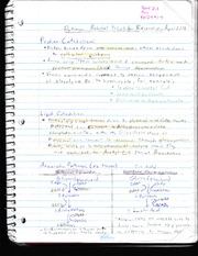 Class Note 16 - Catabolism and Pathways Keyterms