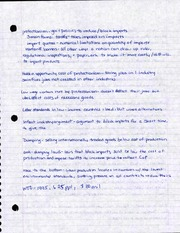 Protectionism Notes