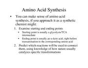 Chappter 22 AMino Acid and Nucleic Acid Synthesis