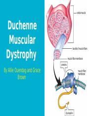 Honors Biology Duchenne Muscular Dystrophy Project