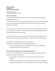 reviewsheet_ap02