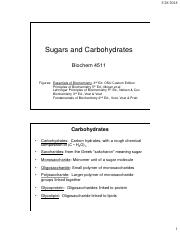 Chapter 11 Carbohydrates (2).pdf