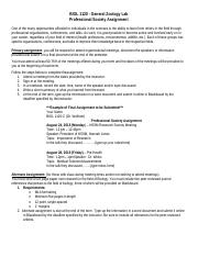 Professional Organization Assignment.pdf