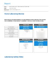 Randy Hopkins-Laboratory Safety report