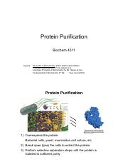 Lecture_4511_021517_Protein Purification and Identification.pdf