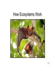 3-+How+Ecosystems+Work.pdf