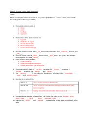 Module 3 Lesson 1 Notes Guide Document