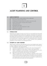 audit planning and control