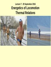 Lecture 7s_Energetics of Locomotion_ Thermal Relations_29 Sept 2016