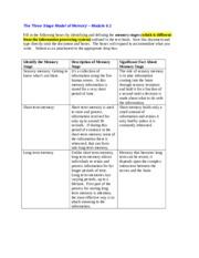 psychodynamic perspective essay