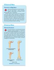 Blue Boxes Lower Limbs.docx