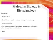 lab7 Molecular Biology ppt