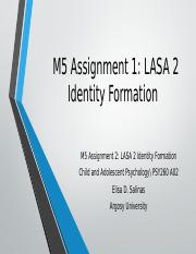 M5 Assignment 1 LASA 2 Identity Formation