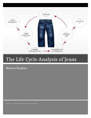 The Life Cycle Analysis of Jeans