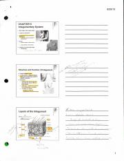 ch 5-ppt notes.pdf