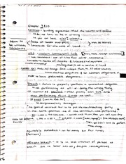 Contracts notes