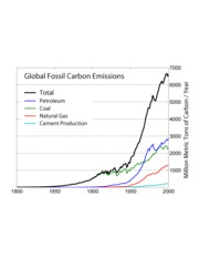 global fossile carbon emissions
