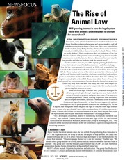 The+Rise+of+Animal+Law