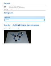 Biological Macromolecules - Experimentation report (1)