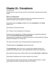 Chapter 33 - Trocophores