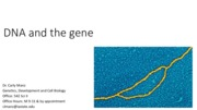 Week 3.1 DNA and the gene post-lecture.pdf