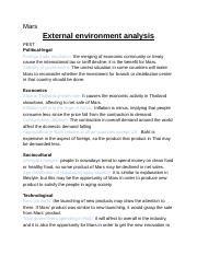 ex-internalanal(with SWOT tell).docx