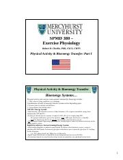Physical Activity Bioenergy Transfer Part One 9 notes