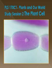 Session 2 Cells TQ (1).pdf