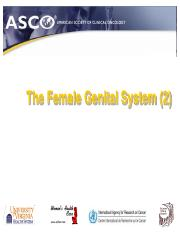 The Female Genital System (2)