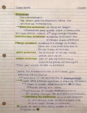Chapter 5: Paying Attention (CLASS NOTES)