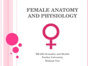 3%20Female%20Anatomy%20and%20Physiology