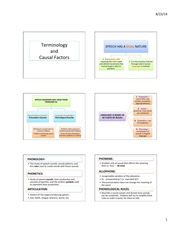 Terminology and Causal Factors 6 slide handout