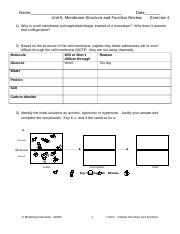 characteristics of life worksheet answers name. Black Bedroom Furniture Sets. Home Design Ideas