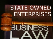 state-own-enterprise-presenation