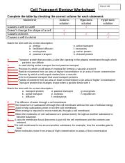 cell transport review worksheet answers - Cell Transport ...