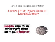 F11_L13-14_learning_memory_II
