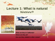 Lecture1NaturalHistoryW10