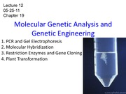 Lecture 12 - molecular genetic analysis_FA-1