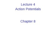 Lecture 4    Action Potentials